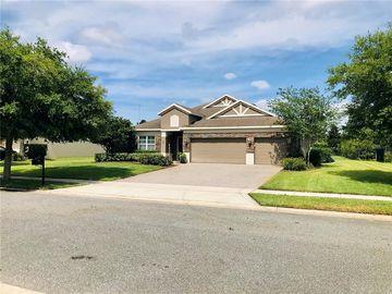3141 AMALFI DRIVE, Orlando, FL, 32820,