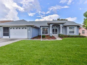 10368 HENDERSON STREET, Spring Hill, FL, 34608,