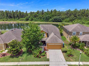 5535 SHASTA DAISY PLACE, Land O Lakes, FL, 34639,