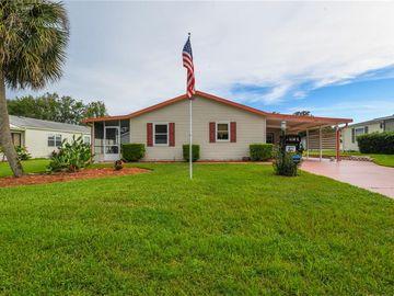 1234 E SCHWARTZ BOULEVARD, Lady Lake, FL, 32159,