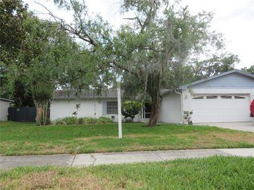 7815 CAPWOOD AVENUE, Temple Terrace, FL, 33637,