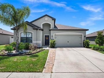 827 LAUREL VIEW WAY, Groveland, FL, 34736,