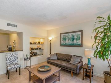 1275 CLEVELAND STREET, Clearwater, FL, 33755,