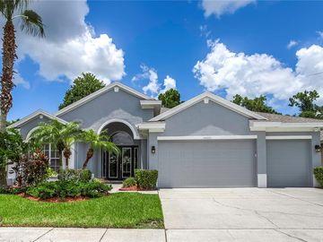 10601 GRETNA GREEN DRIVE, Tampa, FL, 33626,