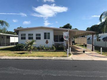 12651 SEMINOLE BOULEVARD #33, Largo, FL, 33778,