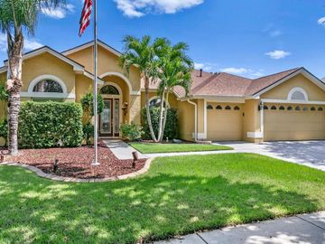 8312 SUMMER GROVE ROAD, Tampa, FL, 33647,