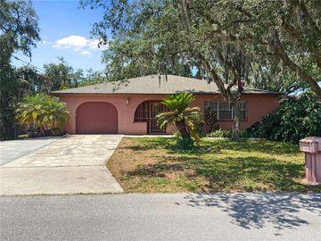 10016 N HYALEAH ROAD, Tampa, FL, 33617,