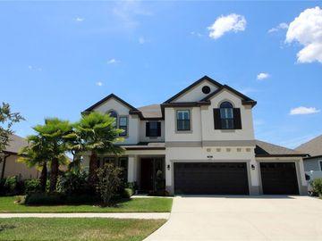 10645 MISTFLOWER LANE, Tampa, FL, 33647,