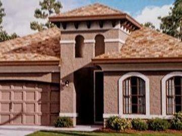 34101 EVERGREEN HILL, Wesley Chapel, FL, 33545,