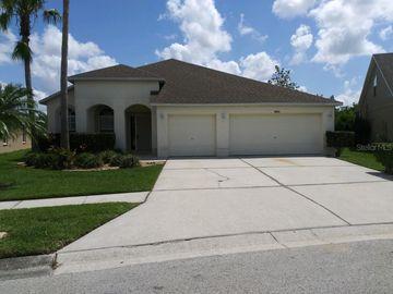 18313 CYPRESS HAVEN DRIVE, Tampa, FL, 33647,