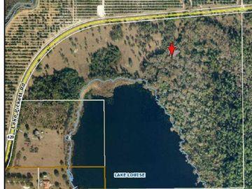 18996 LAKE PICKETT ROAD, Orlando, FL, 32820,