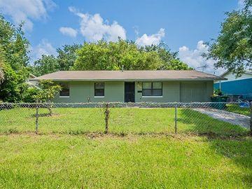 309 LINCOLN AVENUE, Mount Dora, FL, 32757,