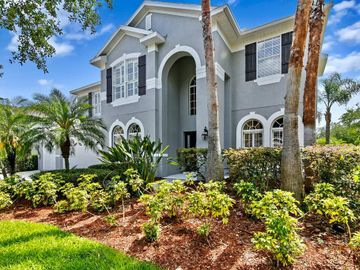 16174 COLCHESTER PALMS DRIVE, Tampa, FL, 33647,