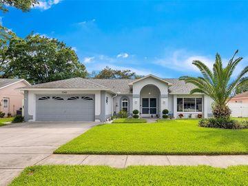 7343 FAIRWOOD AVENUE, New Port Richey, FL, 34653,