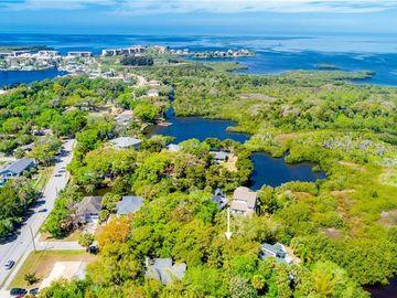 None DAMEN LANE, Port Richey, FL, 34668,
