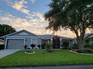10428 MOSHIE LANE, San Antonio, FL, 33576,