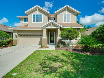 20076 HERITAGE POINT DRIVE, Tampa, FL, 33647,