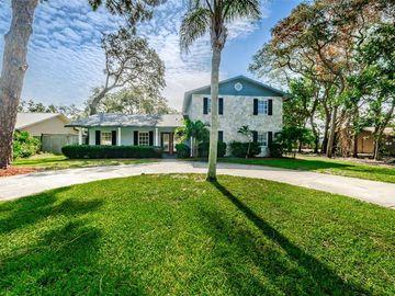 1004 N FLORIDA AVENUE, Tarpon Springs, FL, 34689,