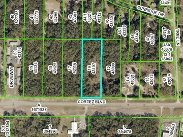 34377 CORTEZ BOULEVARD, Ridge Manor, FL, 33523,