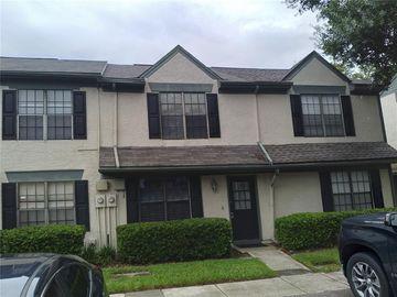 16563 BRIGADOON DRIVE, Tampa, FL, 33618,