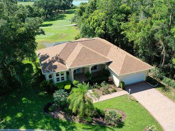 2002 ALLENDE AVENUE, The Villages, FL, 32159,