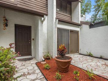 7909 LUXBURY PLACE, Tampa, FL, 33614,