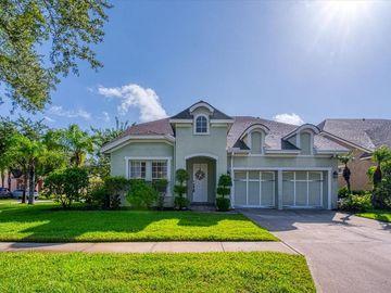 14643 CHATSWORTH MANOR CIRCLE, Tampa, FL, 33626,