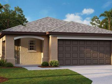 16659 DELIA STREET, Wimauma, FL, 33598,