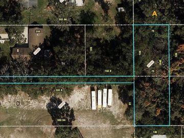2845 DONALD AVENUE, Zellwood, FL, 32798,
