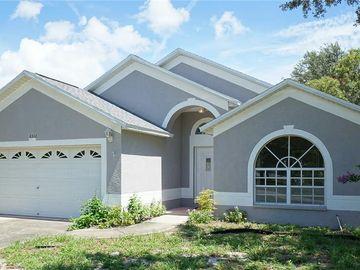 3311 W MARCUM STREET, Tampa, FL, 33611,