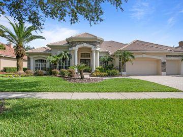 9906 TREE TOPS LAKE ROAD, Tampa, FL, 33626,