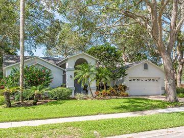 1429 WETHERINGTON WAY, Palm Harbor, FL, 34683,