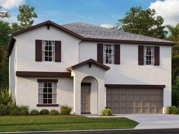 4710 WILD SENNA BOULEVARD, Tampa, FL, 33619,
