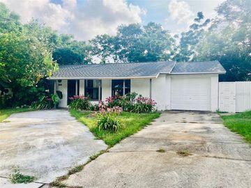 1200 JADEWOOD AVENUE, Clearwater, FL, 33759,