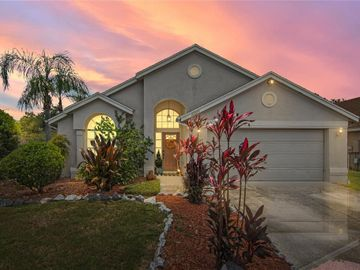 10223 WILLOWEMAC COURT, Orlando, FL, 32817,
