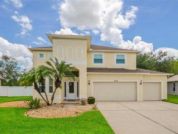 10779 PLANTATION BAY DRIVE, Tampa, FL, 33647,