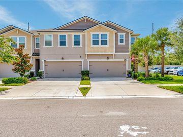 10334 HOLSTEIN EDGE PLACE, Riverview, FL, 33569,