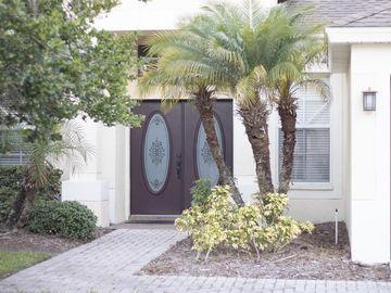 10413 CANARY ISLE DRIVE, Tampa, FL, 33647,