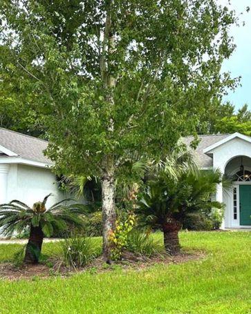 2980 W BEAUMONT LANE Eustis, FL, 32726