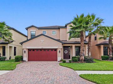 15240 ANGUILLA ISLE AVENUE, Tampa, FL, 33647,