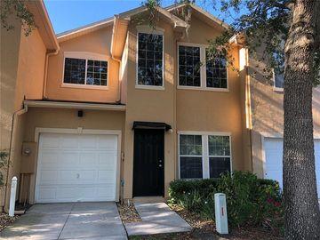 6206 CLIFTON PALMS DRIVE, Tampa, FL, 33647,