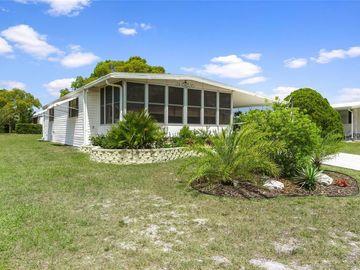 7429 MORELLI AVENUE, Brooksville, FL, 34613,