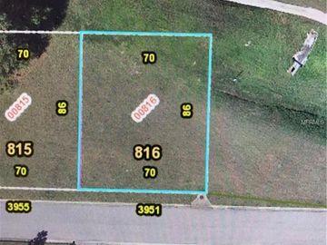 3951 GREENBLUFF ROAD #816, Zellwood, FL, 32798,