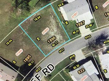 4117 GREENBLUFF ROAD #1896, Zellwood, FL, 32798,