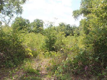 None ANTLER LANE, Spring Hill, FL, 34610,