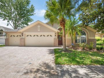 10237 TIMBERLAND POINT DRIVE, Tampa, FL, 33647,