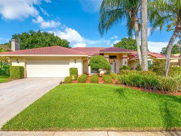 12909 CINNIMON PLACE, Tampa, FL, 33624,