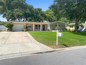 3052 MERRILL AVENUE, Clearwater, FL, 33759,