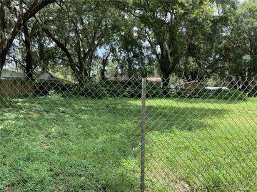 None 060212-0000, Thonotosassa, FL, 33592,