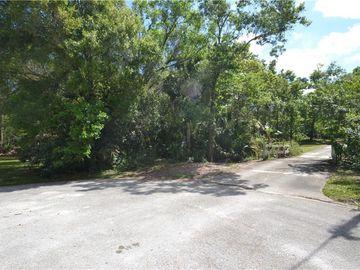 0 MUELLER S LANE, Safety Harbor, FL, 34695,